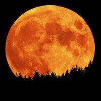 Full-harvest-moon