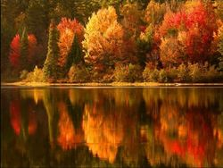 Fall_colors