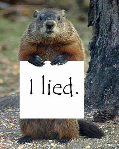 Gopher_I_Lied