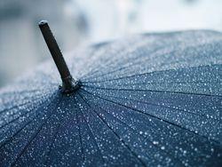 Umbrella_april-showers