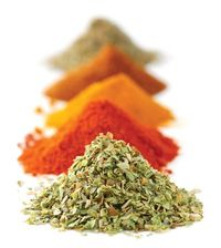 Spices jpg