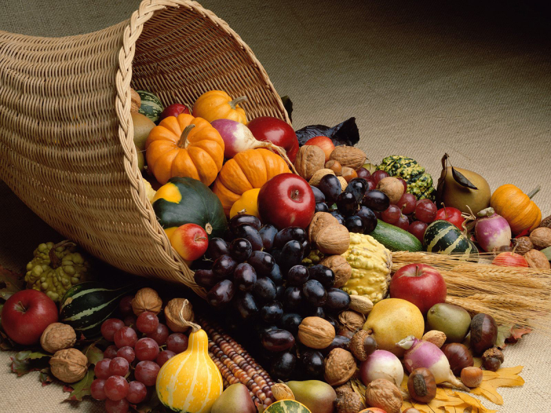 Fruits-Fall-Harvest