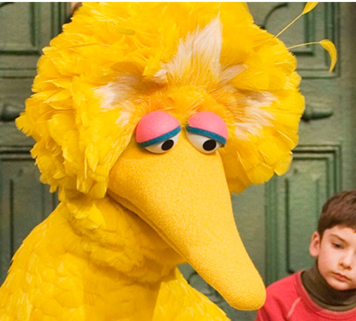 Sad-Big-Bird