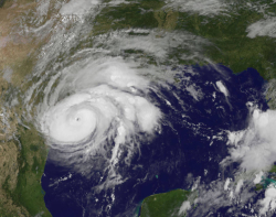 Harvey-goes-82517_0