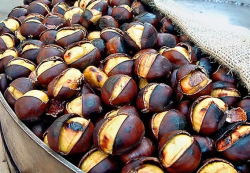 Local-food-and-wine-roasted-chestnuts