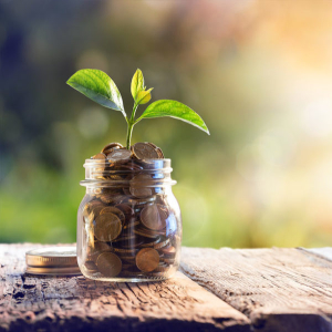 Plant-Growing-In-Savings-Coins