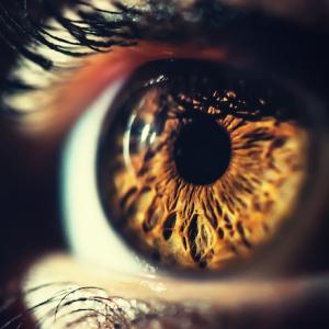 Eye_retina_gettyimages_batke