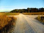 Fork_road02